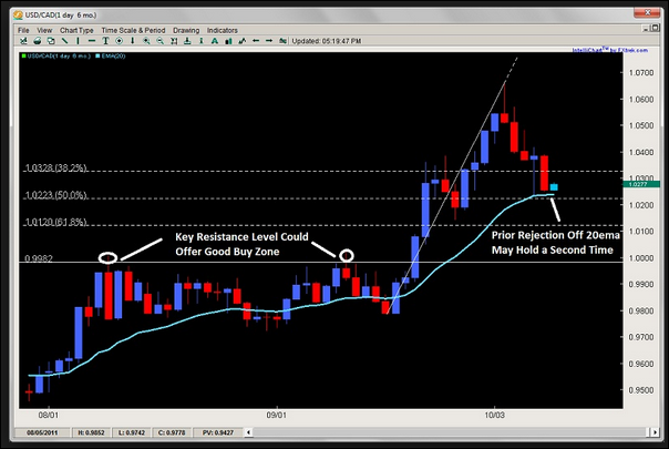 Forex course torrent